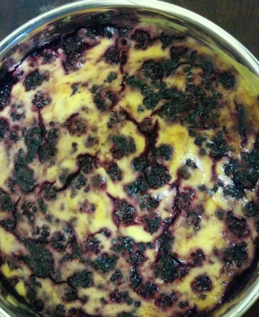 Home made Blackberry Cheesecake from last summer