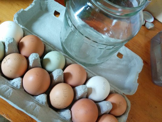 A dozen free range eggs and an old pickle jar, waiting to get together!
