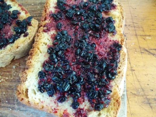 Elderberry Jam on Sourdough = Yum!